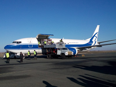 Volga-Dnepr Continues to Support the Reintroduction of Endangered Przewalski Horses in the Ural Steppe of Russia