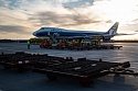 AirBridgeCargo and Intradco Global guarantee a first-class delivery of breeding cattle to Yuzhno Sakhalinsk