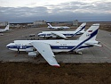 "VOLGA-DNEPR DELIVERED 690 TONNES OF YOUNG WINE FOR JAPAN'S ""BEAUJOLAIS NOUVEAU"" FESTIVAL"